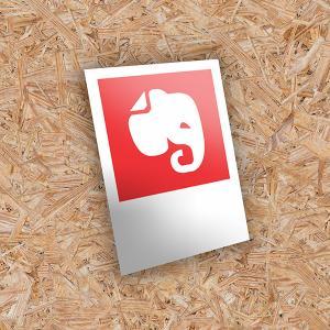 Foto Revelação - Polaroid Papel Fotográfico 230gr 7cm x 10cm 4X0 - Colorido Frente Natural Corte Reto Sem Extra